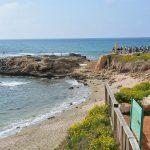 Heiliges Land – die Küste I